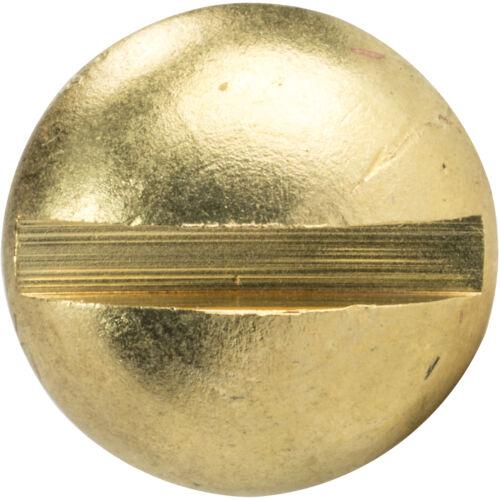 "#3 x 1/"" Brass Round Head Wood Screws Slotted Drive Qty 100"
