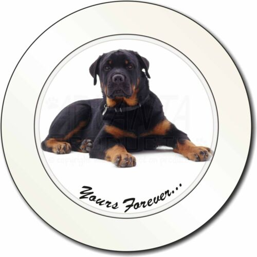 AD-RW5T Rotweiler Dog /'Yours Forever/' Car//Van Permit Holder//Tax Disc Gift