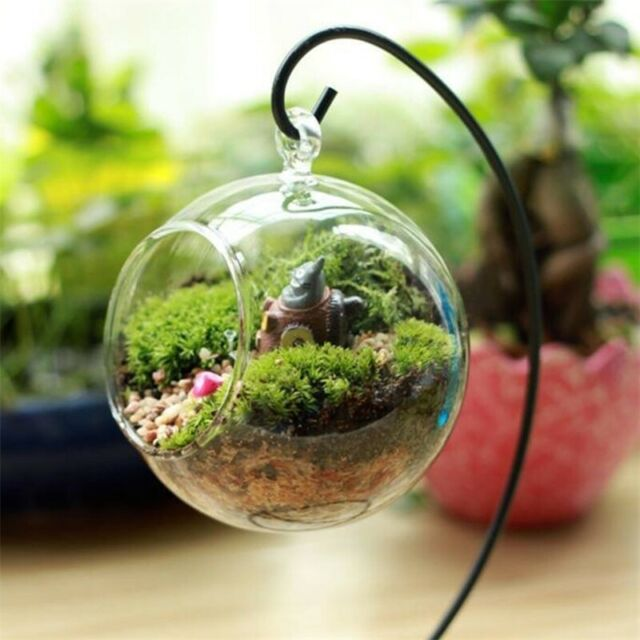 Clear Flower Hanging Vase Planter Terrarium Container Glass Home Party Decor