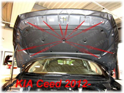 BRA für Kia Ceed Bj ab 2012 Steinschlagschutz Haubenbra Tuning