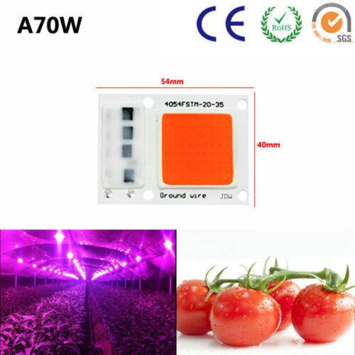 LED Chip Integrated Smart IC Driver Plant Grow 110V 220V 30W 50W 70W 100W 200W