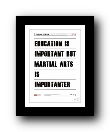 Martial Arts  ❤ poster art signed limited edition print -cool gift present