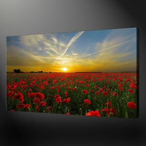 Collection Ici Poppy Field Coucher De Soleil Toile Impression Photo Wall Art Home Decor Gratuit Livraison Rapide-afficher Le Titre D'origine