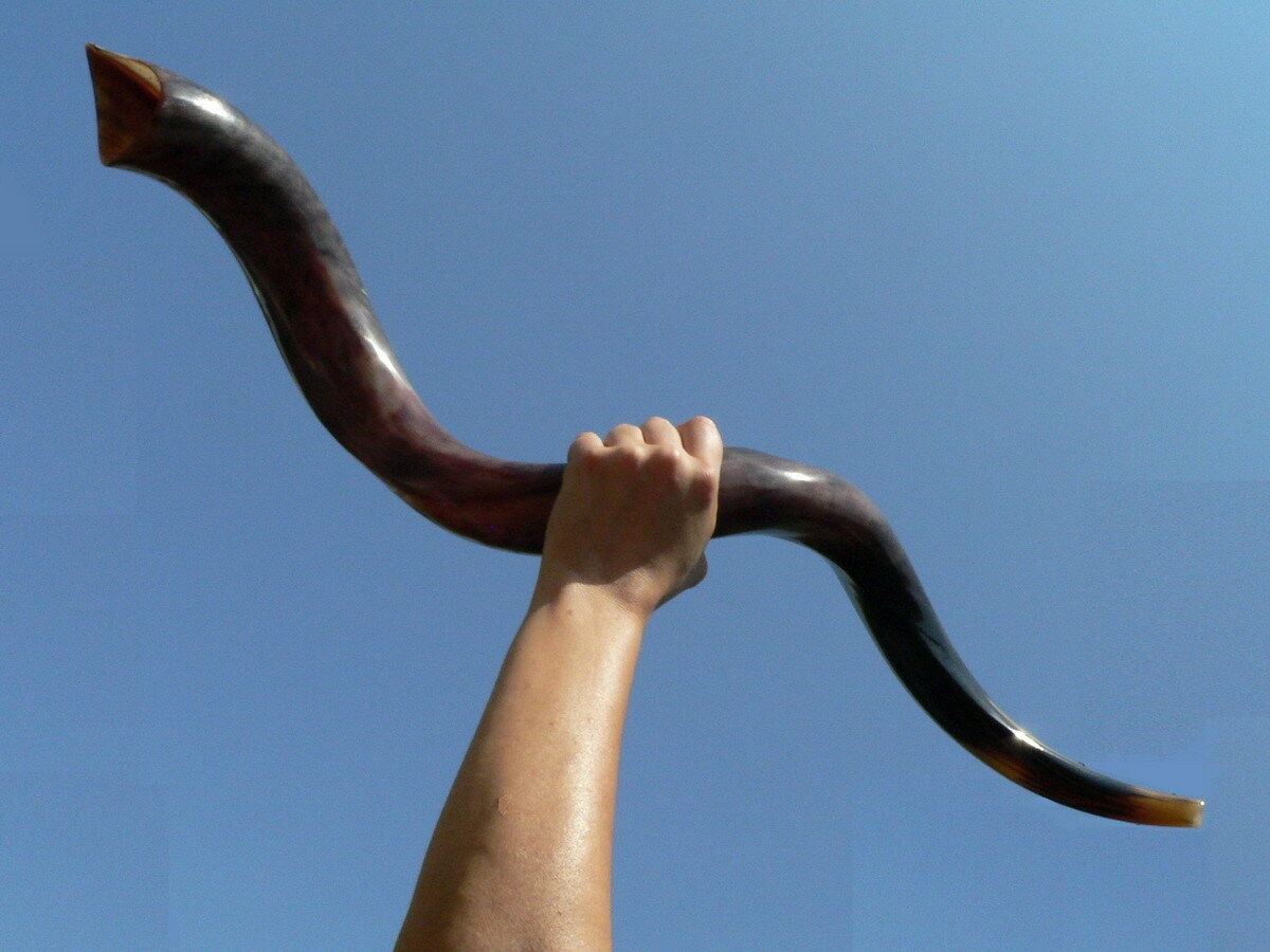 Small-Large Kudu SHOFAR Hebrew Trumpet Blow Horn Jewish Kosher, Holy Land Israel