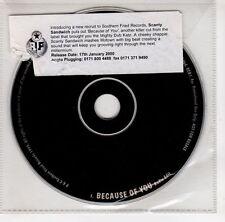 (GJ8) Scanty Sandwich, Because Of You - 2000 DJ CD