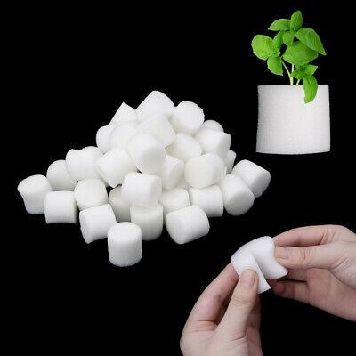 50pcs Durable Garden Supplies Cultivation Aquarium Seed Trays Soilless Hydroponic Flower Pots Nursery Sponge 25mm,White