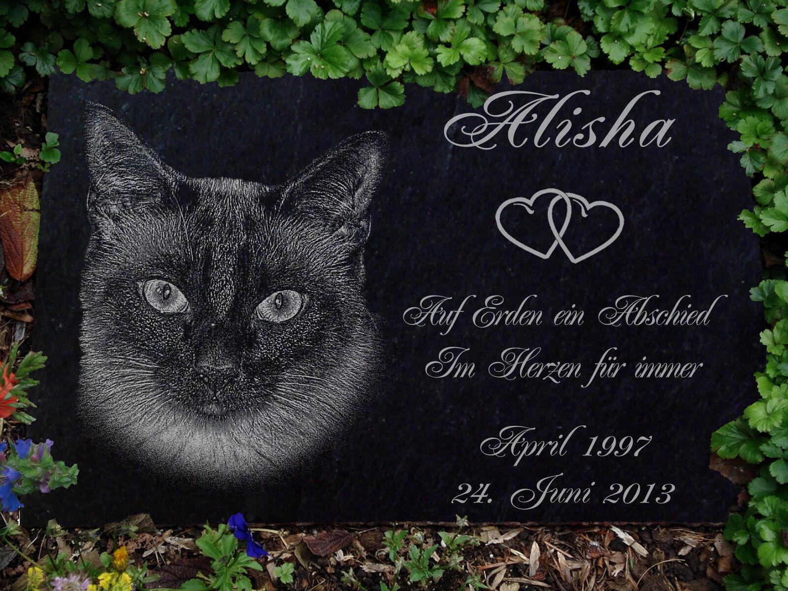 Grabstein Gedenkstein Gedenkplatte Siam Katzen Katze-010 ►Textgravur◄ 50 x 25 cm