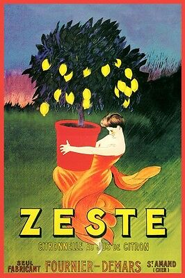 Lady Holding Lemon Fruit Tree Zest Lemonade French Vintage Poster Repo FREE S/H