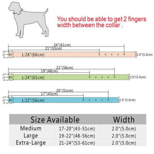 2.0inch Wide PU Leather Dog Collar with  Spkies for Pit Bull Boxer Adjustable