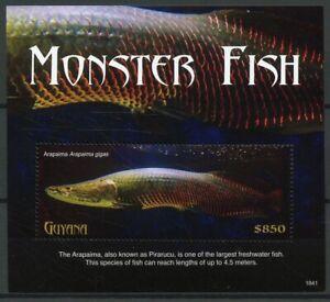 Guyana 2018 Neuf Sans Charnière Monster Fish Arapaima 1 V S/s Poissons Marins Timbres-afficher Le Titre D'origine Adopter Une Technologie De Pointe