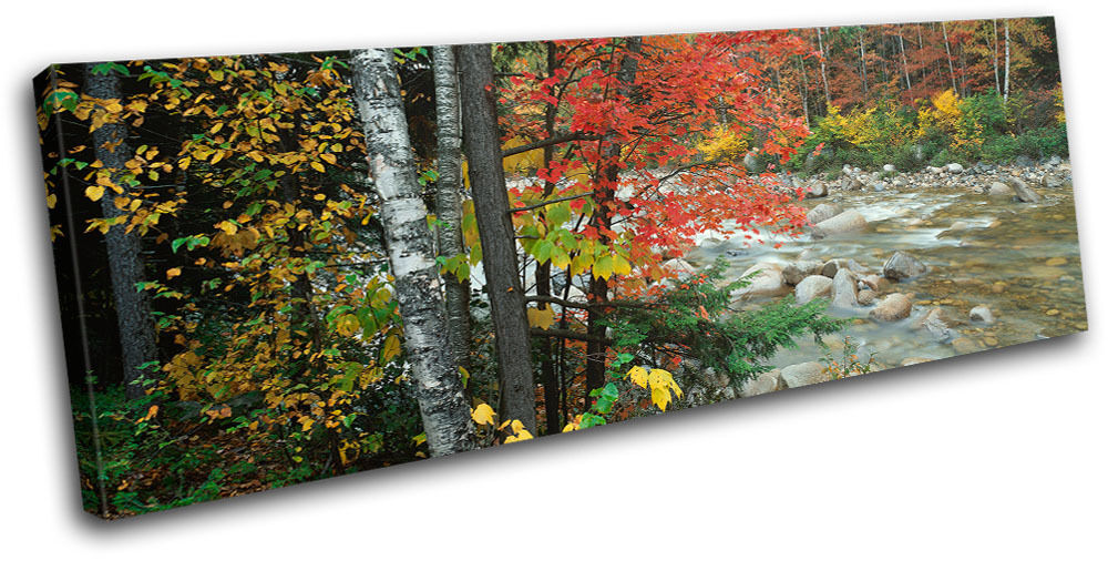 Forest Stream Landscapes SINGLE TOILE murale ART Photo Print