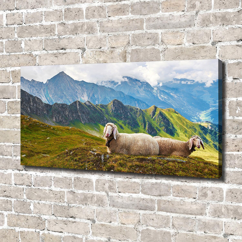Leinwandbild Kunst-Druck 140x70 Bilder Landschaften Schafe Alpen