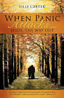 When Panic Attacks ... by LILLI Carter (Paperback / softback, 2008)