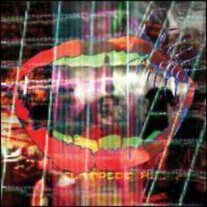 Animal-Collective-Centipede-Hz-CD