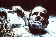 RIDLEY SCOTT ALIEN 1979  H.R. GIGER DIAPO DE PRESSE ORIGINAL VINTAGE SLIDE #5
