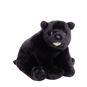 Image is loading TY-CINDERS-Beanie-Baby-Black-Bear-MWMT-6th- 9b3340c4a0c