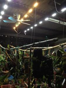 LED-3000k-Growing-light-green-house-vegetable-indoor-flower-plants-solar-panel