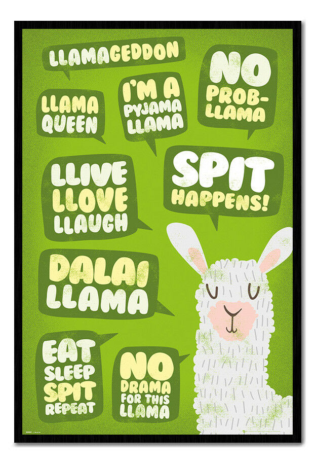 Llama Quotes Poster Framed Cork Pin Board With Pins