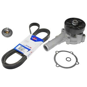 Water Pump Thermostat & Belt Kit suits Ford Falcon BA BF FG 4.0L 6cyl 03~14