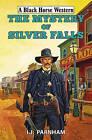The Mystery of Silver Falls by I. J. Parnham (Hardback, 2015)