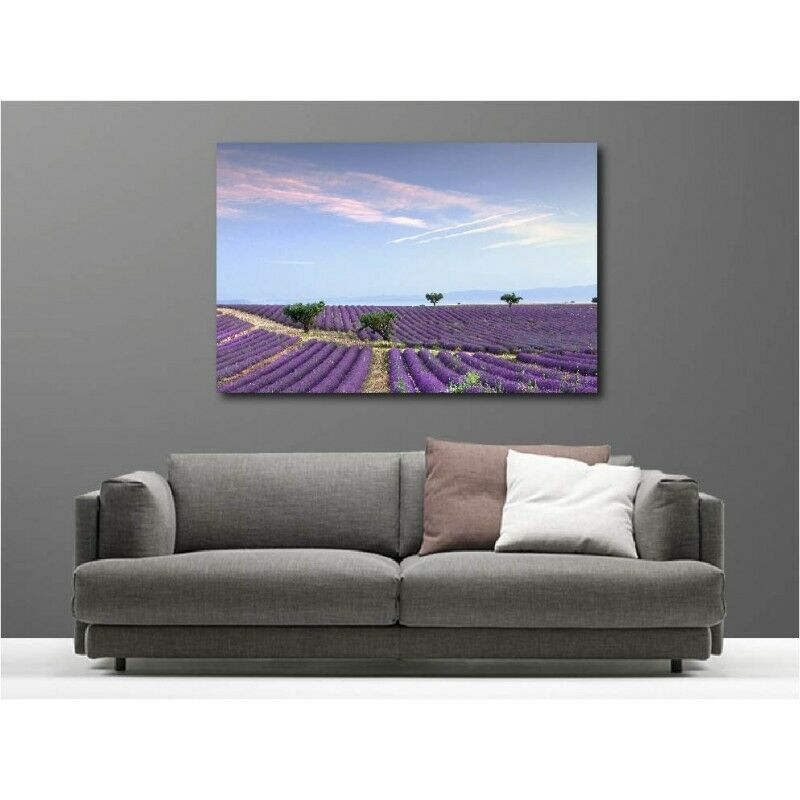 Canvas Fabric Deco Rectangle Field of Lavender 66491734