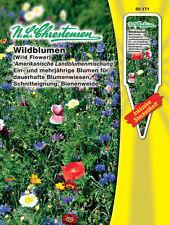 Wildblumen, amerik. Landblumen ein- & mehrjährig, Blumenwiese Bienenweide 50171