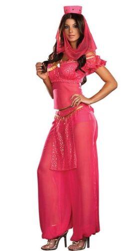 BELLY DANCER BOLLYWOOD JASMINE GENIE ARABIAN PRINCESS LADIES FANCY DRESS COSTUME