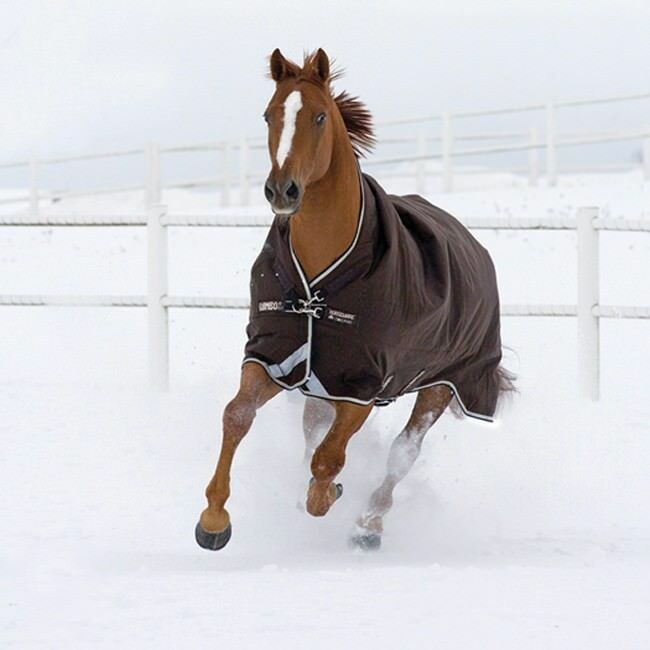 Horseware Rambo WUG turnout 400g heavy-chocolate negro-weidedecke