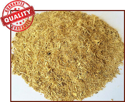 African Dream Root Herb (20 grams): Powerful Lucid Dreaming - Silene Capensis