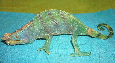 Realistic PVC Parsons Chameleon Lizard Replica