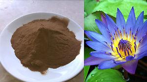 Blauer-Lotus-Extrakt-100-1-Nymphaea-caerulea