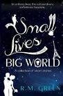 Small Lives, Big World: A Collection of Short Stories From Near and Far by R. M. Green (Paperback, 2016)