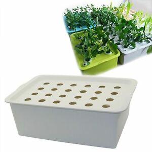 NUOVO sito IMPIANTO 24 FORI Coltura Idroponica Kit da Giardino Pot Fioriera piantina di coltivazione