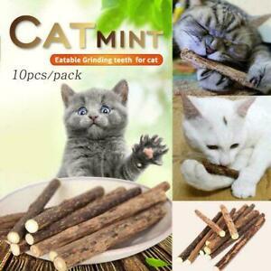 10-Cat-Snacks-Natural-Matatabi-Chew-Catnip-Stick-Teeth-Molar-K0J8-Toy-Brush-P7R6