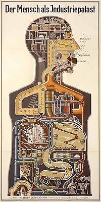 PRINT PAINTING  ART HUMAN WORKS BODY ENGINE GERMAN 800mm health industrial