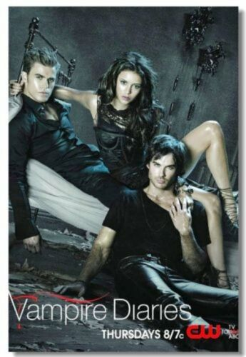 Poster Vampire Diaries Seasons 5 6 Ian Somerhalder Art Wall Print 510