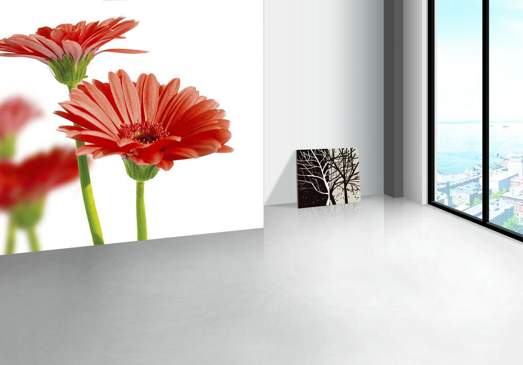 3D Süße Gänseblümchen 9 Tapete Wandgemälde Tapete Tapeten Bild Familie DE Summer