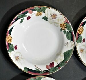 NEW-Tienshan-Magnolia-Rim-Soup-Bowls-Set-of-4