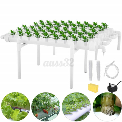 Hydroponic Site Grow Kit 54 Holes Vegetable Planting System Garden Water Pump US