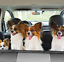 REAR WATERPROOF CAR SEAT COVER DOG PET PROTECTOR TOYOTA CELICA G