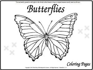 Malbuch 107 Malvorlagen Schmetterlinge Ausmalbilder Als Pdf Kinder Malen Ebay