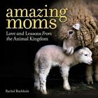 Amazing Moms: Love and Lessons from the Animal Kingdom by Rachel Buchholz (Hardback, 2016)