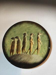 Meerkat-Welsh-slate-Round-Coaster-felt-backed-3-25-034-diameter