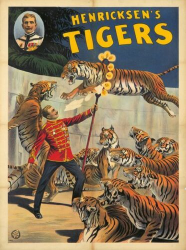 Vintage Circus Henricksen/'s Tigers  Poster A3 Print