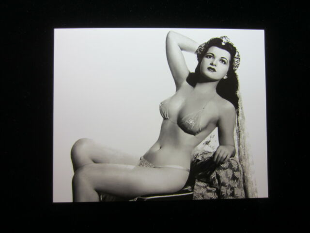 8x10 photo of Sherry Britton 3 1930s'40s pretty sexy burlesque queen