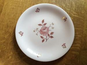 Wedgwood-Alpine-Rose-bone-china-10-1-4-034-dinner-plate