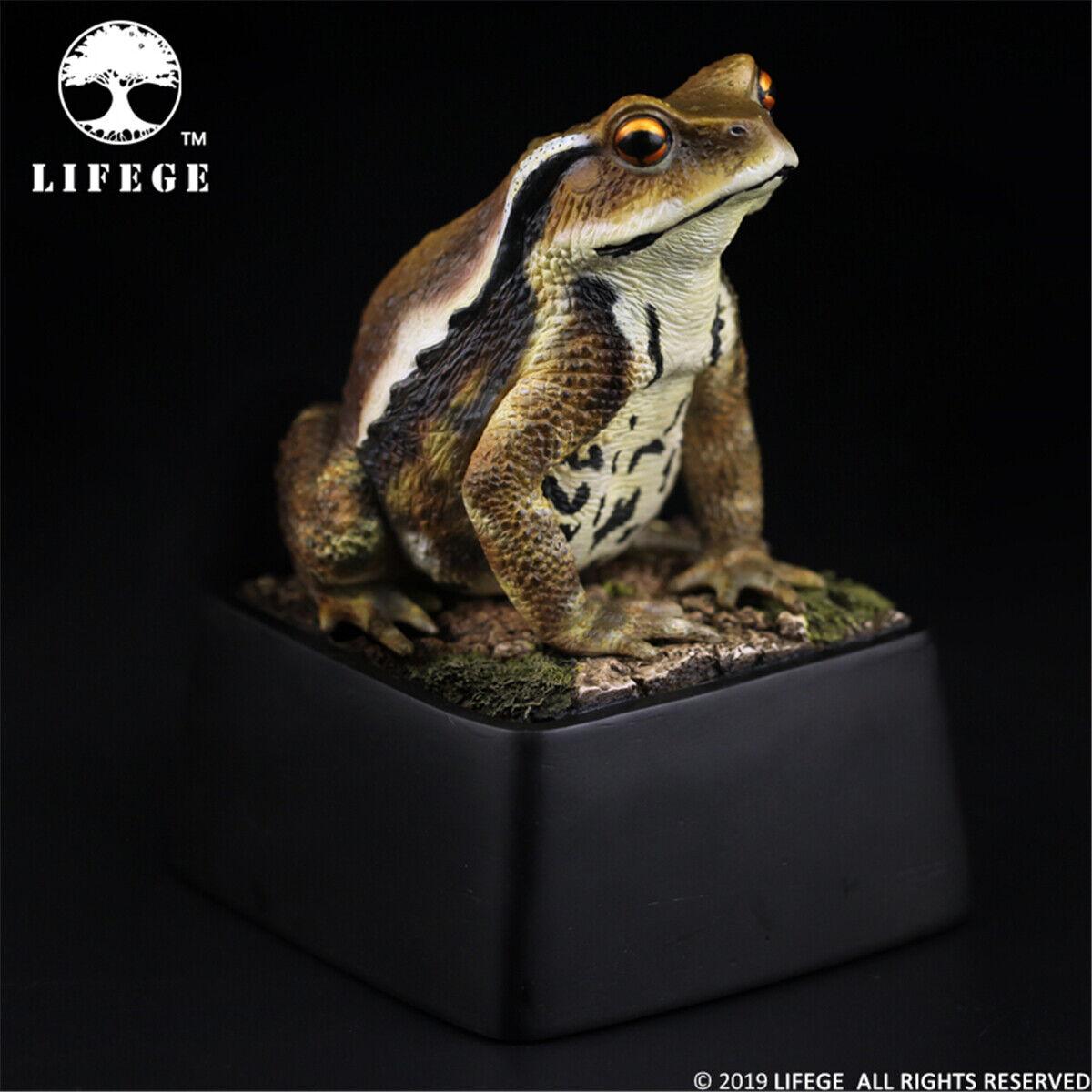 Lifege 1 1 bufo japonicus biología estatua Sapo Juguete de coleccionista de animales salvajes Preventa