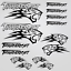 Thundercat-stickers-decal-snowmobile-arctic-cat-snowboard-quad-tuning-helmet miniature 3