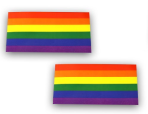 2x1.25in Gay pride Rectangle Shaped 2 Rainbow sticker