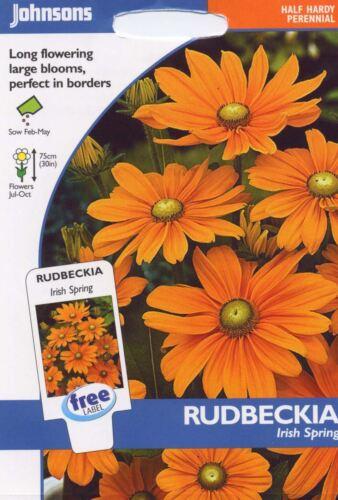 Johnsons Seeds Pictorial Pack 50 Seeds Rudbeckia Irish Spring Flower